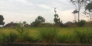 Terrenos à venda no bairro Portinari em Engenheiro Coelho